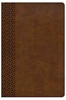 KJV Everyday Study Bible, British Tan LeatherTouch 9781462796960