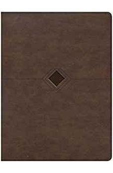 CSB Day-by-Day Chronological Bible, Brown Leathertouch 9781535925600