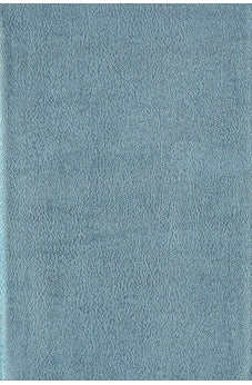 CSB She Reads Truth Shimmer Blue Leathertouch Indexed 9781535991643