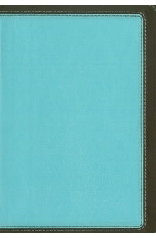 HCSB Study Bible, Personal Size (Blue/Brown) Leathertouch 9781586409692