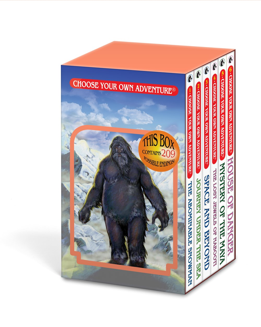 Publisher Boxed Set: Choose Your Own Adventure #1-6