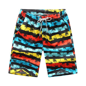 Men's Quick Dry Swimming Trunks