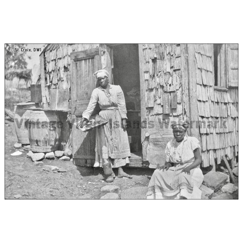 Native Women of St. Croix Postcard - Vintage Virgin Islands