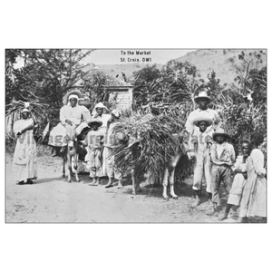 Off to Market ~ St. Croix Postcard - Vintage Virgin Islands