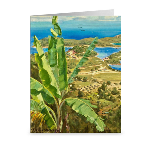 St. Thomas Hillside View by Albert K. Murray ~ Notecard - Vintage Virgin Islands