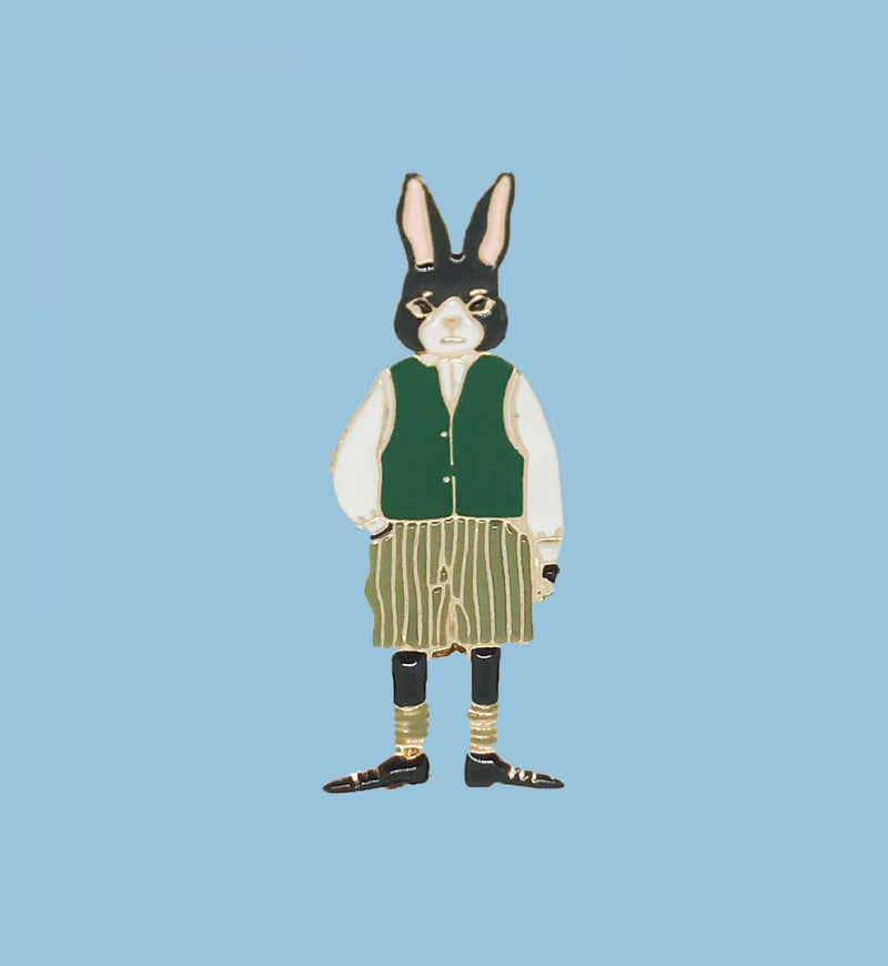 Pin de Mr Rabbit