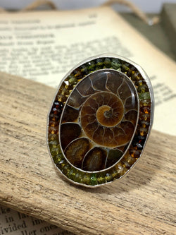 Ammonite Rise Ring