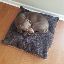 Load image into Gallery viewer, 30 pound dog on medium size pet bed