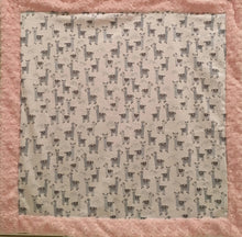 Load image into Gallery viewer, Baby Blanket Bordered in Luxe Cuddle Rosettes in Ice Pink on Alpaclettes in Stone