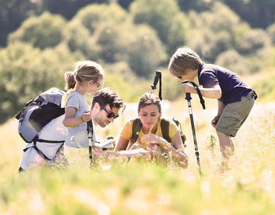Nature's Classroom: 4 Simple Outdoor Lessons for Your Kids