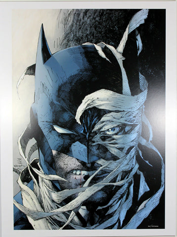 "BATMAN: HUSH ART PRINT by Jim Lee ~ 12"" x 16"" ~ Great Condition"