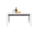 Brando Extendable Dining Table in White and Concrete