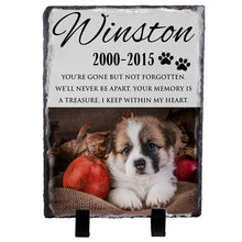 Load image into Gallery viewer, Memorial Colorful  Pet Stone D13