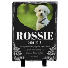 Load image into Gallery viewer, Memorial Colorful  Pet Stone D10