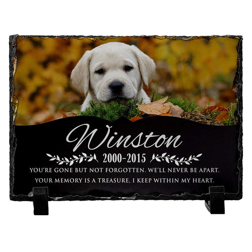 Memorial Colorful  Pet Stone D11