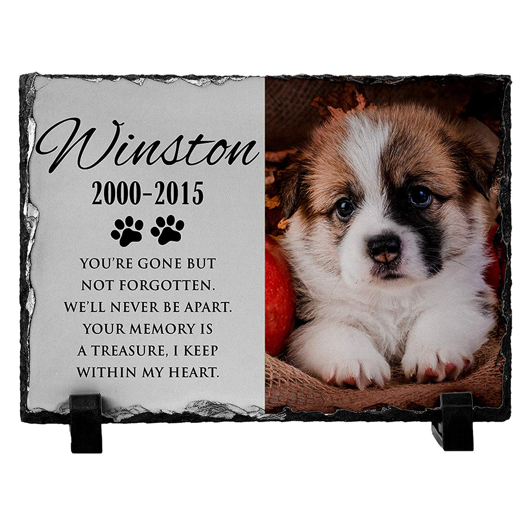 Memorial Colorful  Pet Stone D13