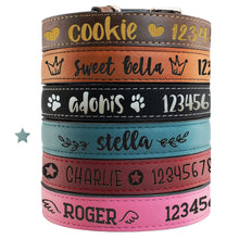 Load image into Gallery viewer, Pet Collars  Design 4