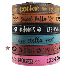 Load image into Gallery viewer, Pet Collars  Design 5