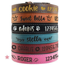 Load image into Gallery viewer, Pet Collars  Design 6