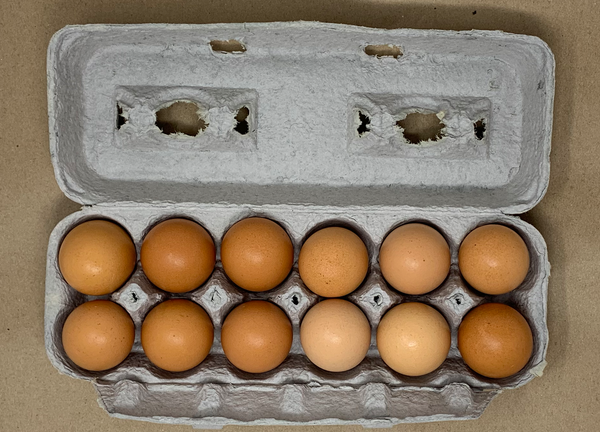 Brown, Cage Free EGGS