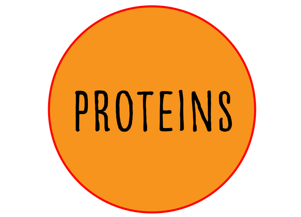 Protein Sides