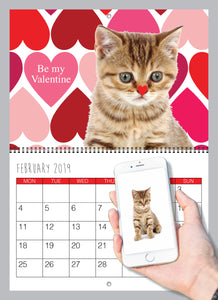 Personalised Cat Calendar