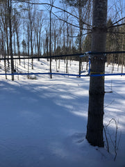 Mainline tubing at the snowmobile trail