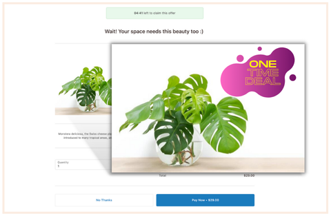 """Screenshot from a one-click upsell landing page reading, """"One-time deal!"""""""
