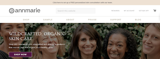 Annmarie Gianni uses a consultation call as their ecommerce lead magnet.