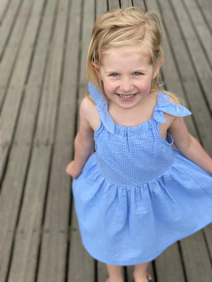 Vignette Georgie Dress | Blue