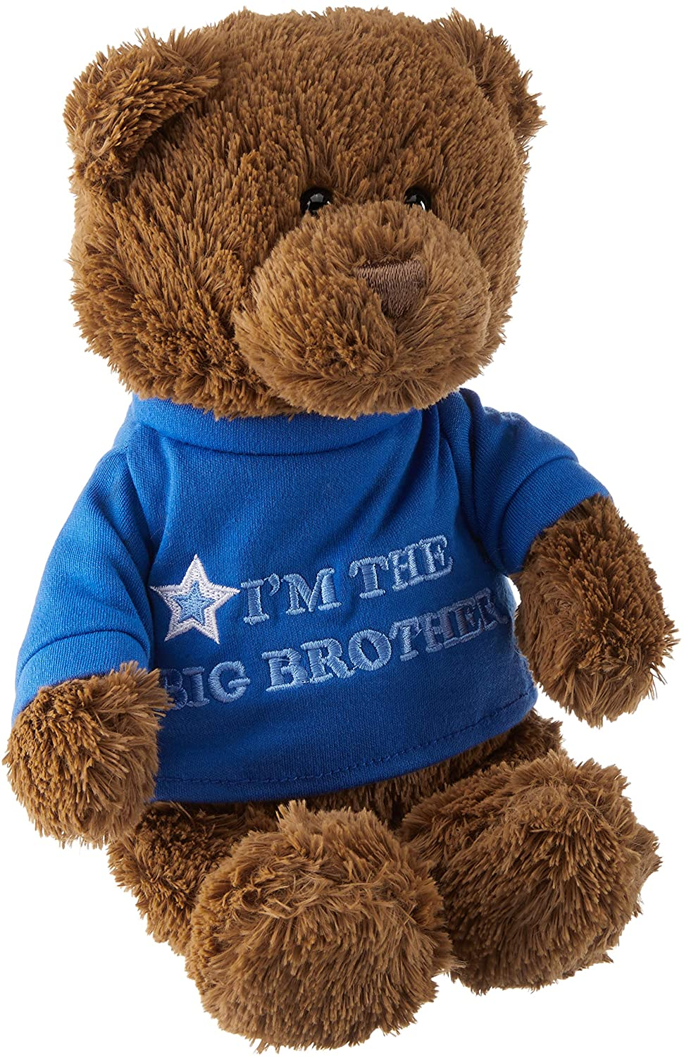 Gund Big Brother Bear, 12inches
