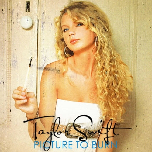 Taylor Swift - Picture To Burn [7