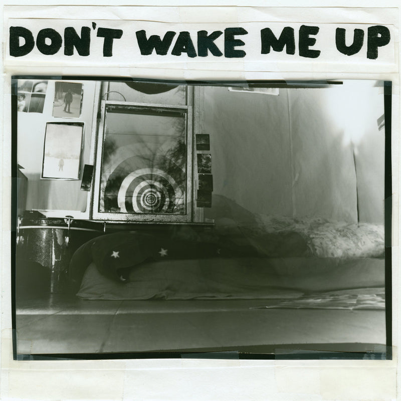 Microphones, The - Don't Wake Me Up [LP]