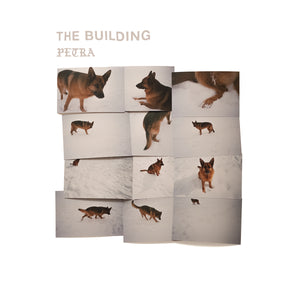 Building, The - Petra [LP - Autographed]