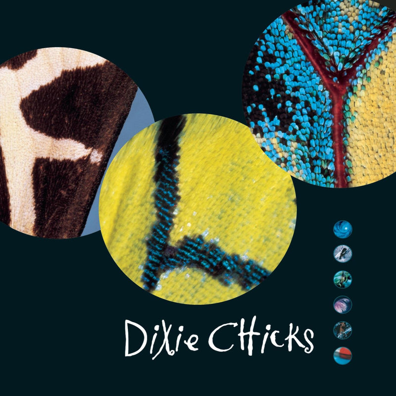 Dixie Chicks - Fly [2xLP]
