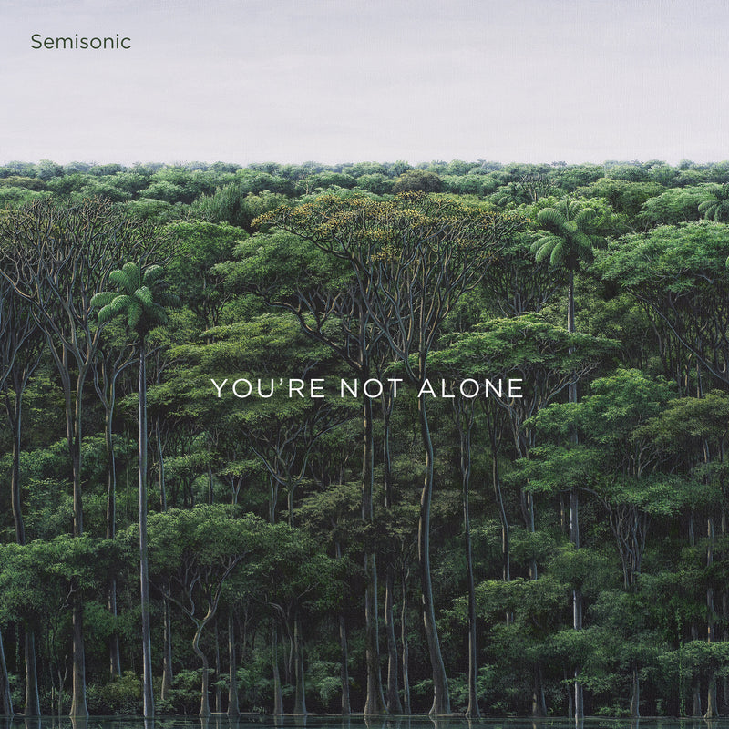 Semisonic - You're Not Alone [LP]