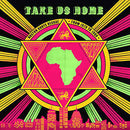 Various Artists - Take Us Home : Boston Roots Reggae [2xLP]
