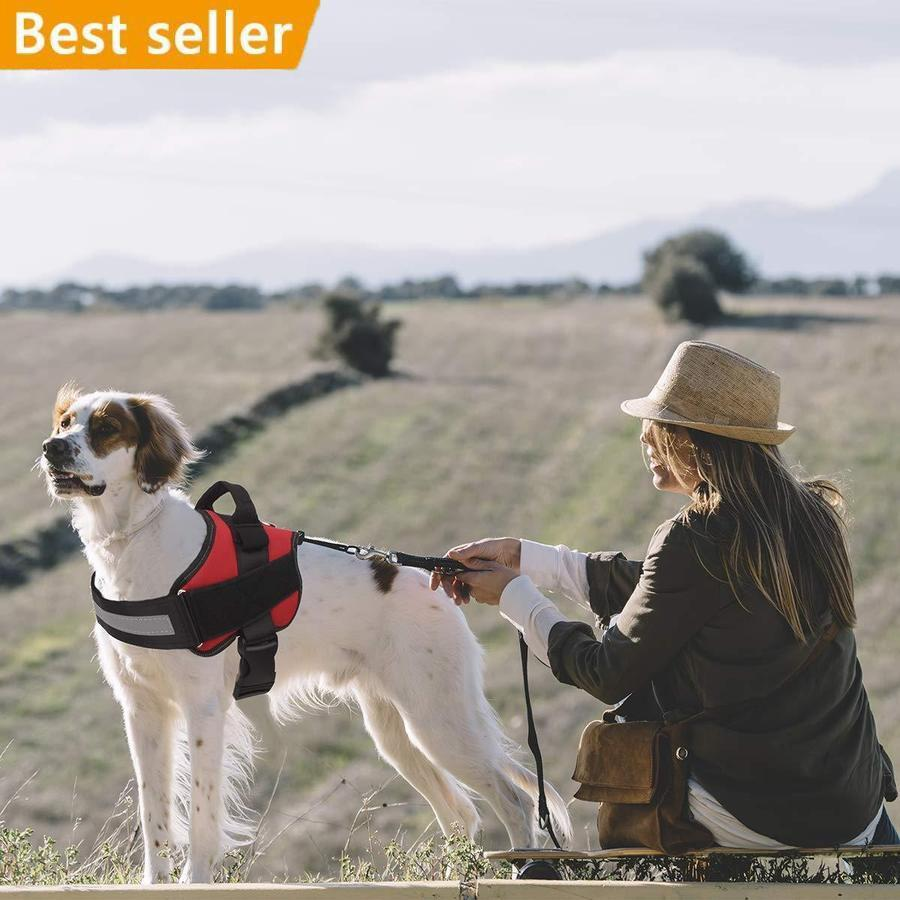 MOEMOEBEAR™ NO PULL DOG HARNESS Chest Strap