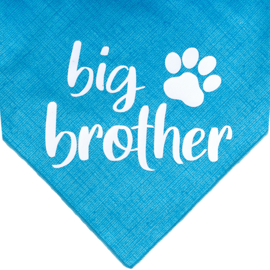 Big Brother - Blue