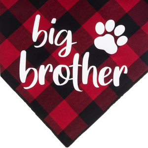 Big Brother - Red/Black