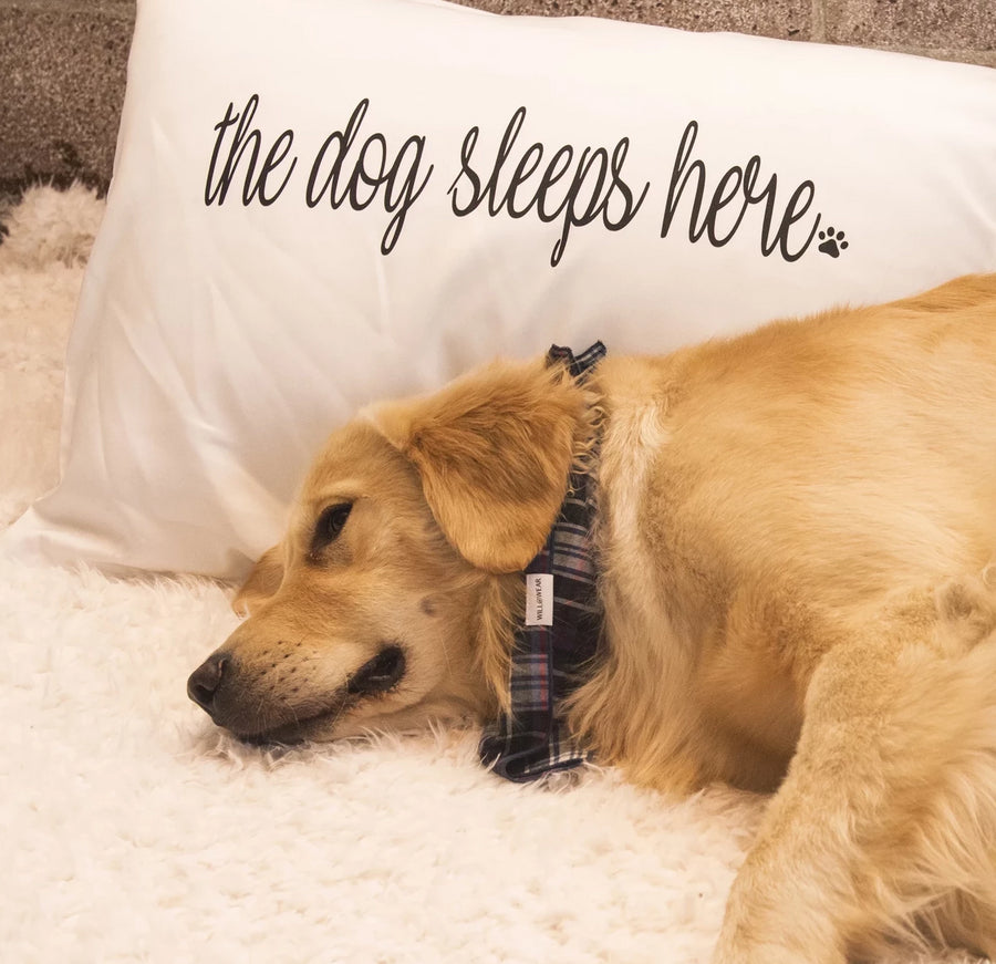 The Dog Sleeps Here Pillow Case Set (left side)