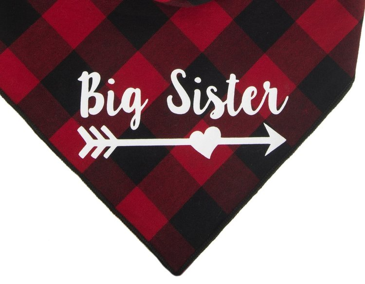 Big Sister Arrow (Red)