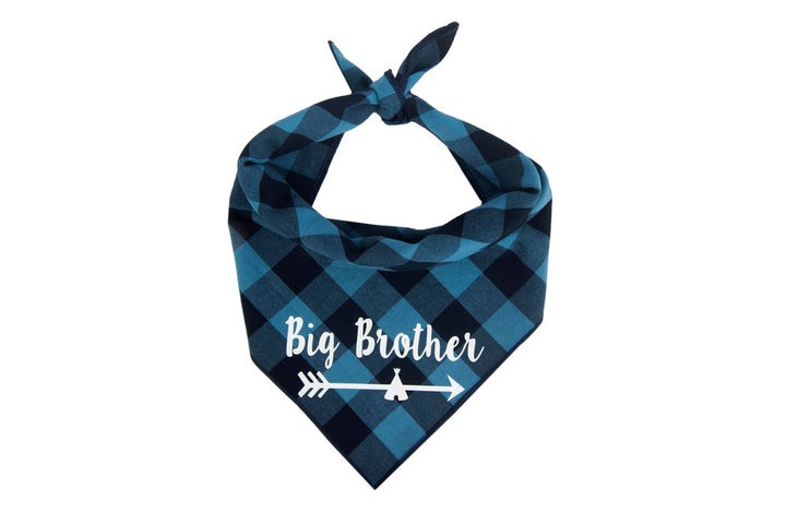 Big Brother Arrow (Blue)