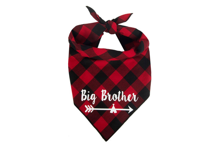 Big Brother Arrow (Red)
