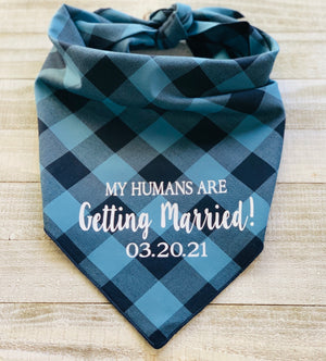 My Humans Are Getting Married! (Blue)