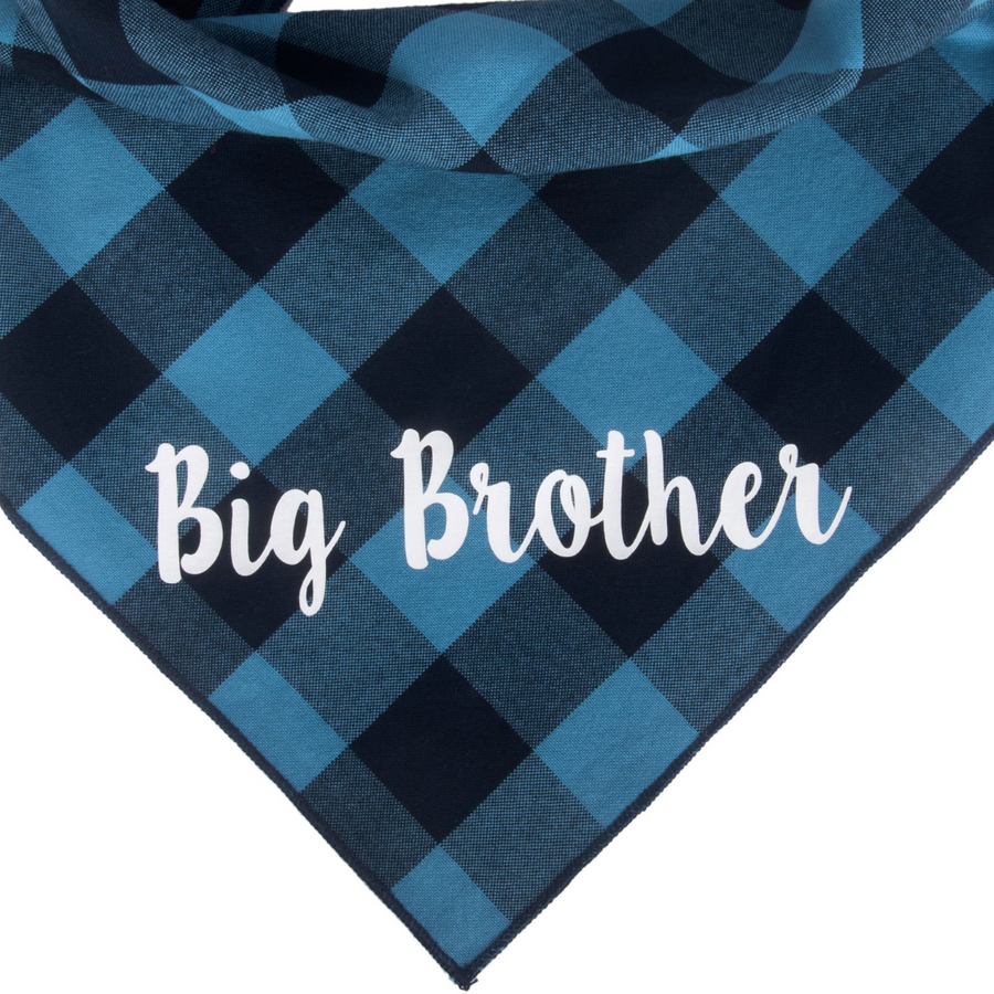 Big Brother (Blue)