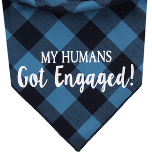 My Humans Got Engaged! (Blue)