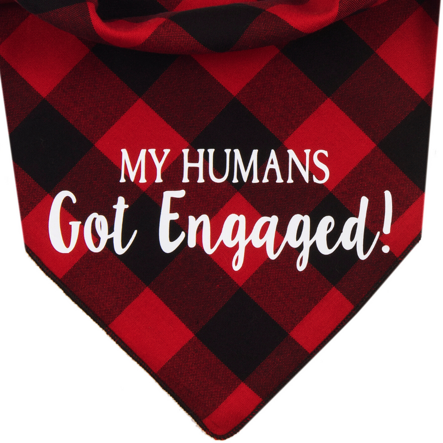 My Humans Got Engaged! (Red)