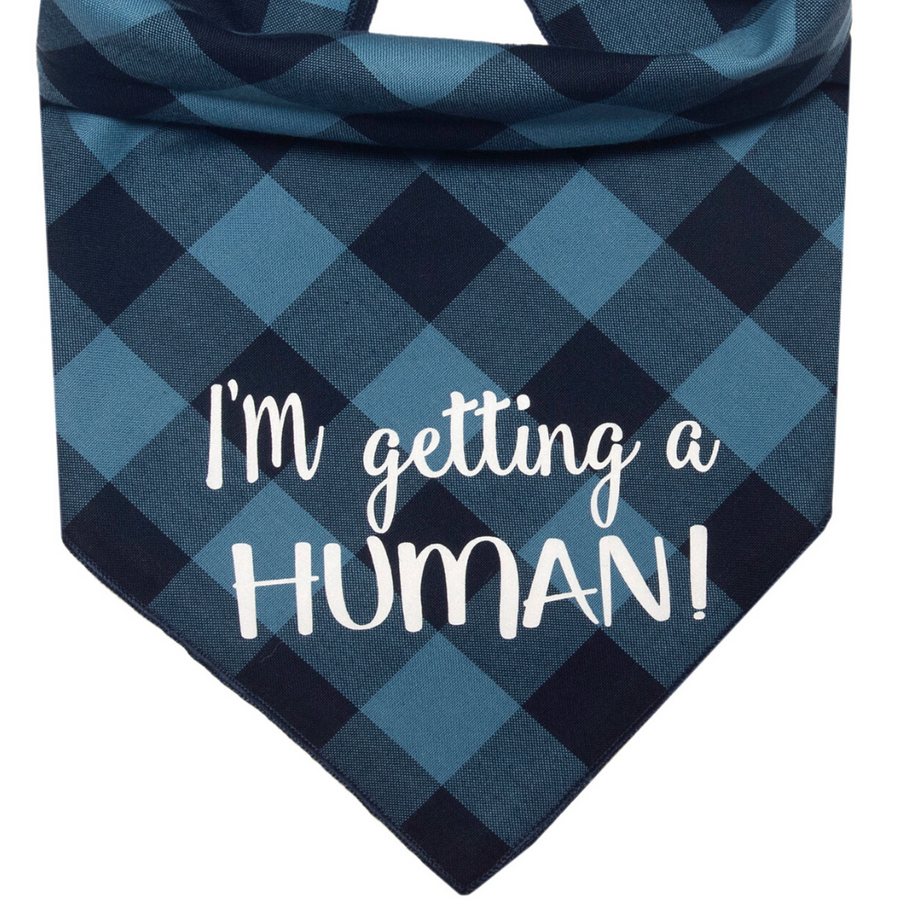 I'm Getting a Human! (Blue)