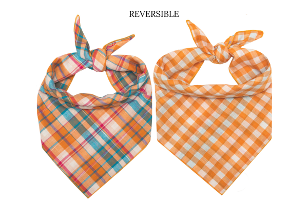 Clementine Reversible